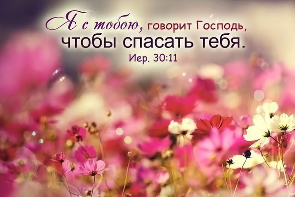 Христианские открытки с цитатами из библии 32
